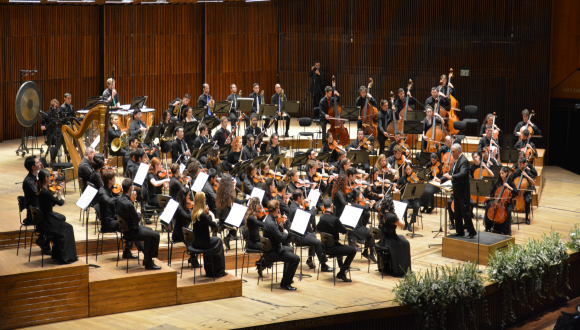 the bmsm orchestra