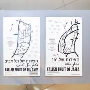 Maps -The Fruits Of Tel Aviv and Jaffa